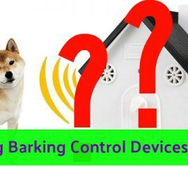 Do Ultrasonic Dog Barking Control Devices Really Work? [The Truth May Shock You]