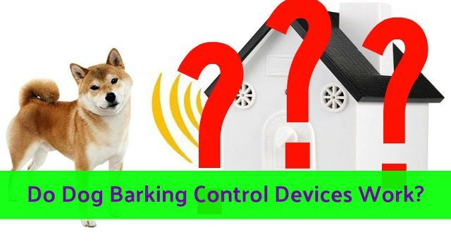 ultrasonic_dog_barking_control_devices_do_they_work